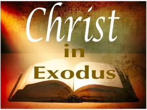 Christ in Exodus